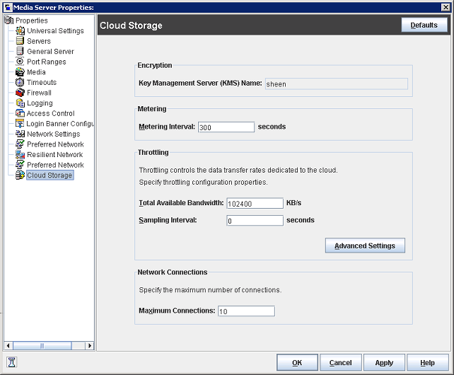 28 Configuring Using the Disk Pool Configuration Wizard Figure 3-1 Cloud Storage dialog box The Cloud Storage dialog box contains the following properties.