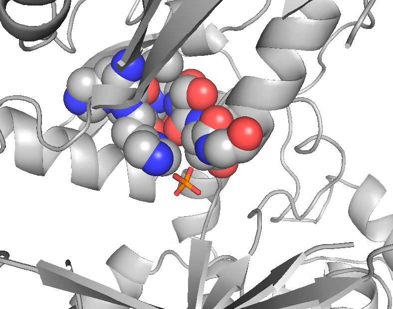 5. Results In the crystal structure, a buffer-derived sulfate ion is bound in proximity of the supposed active site at the canyon floor (figure 5.22).