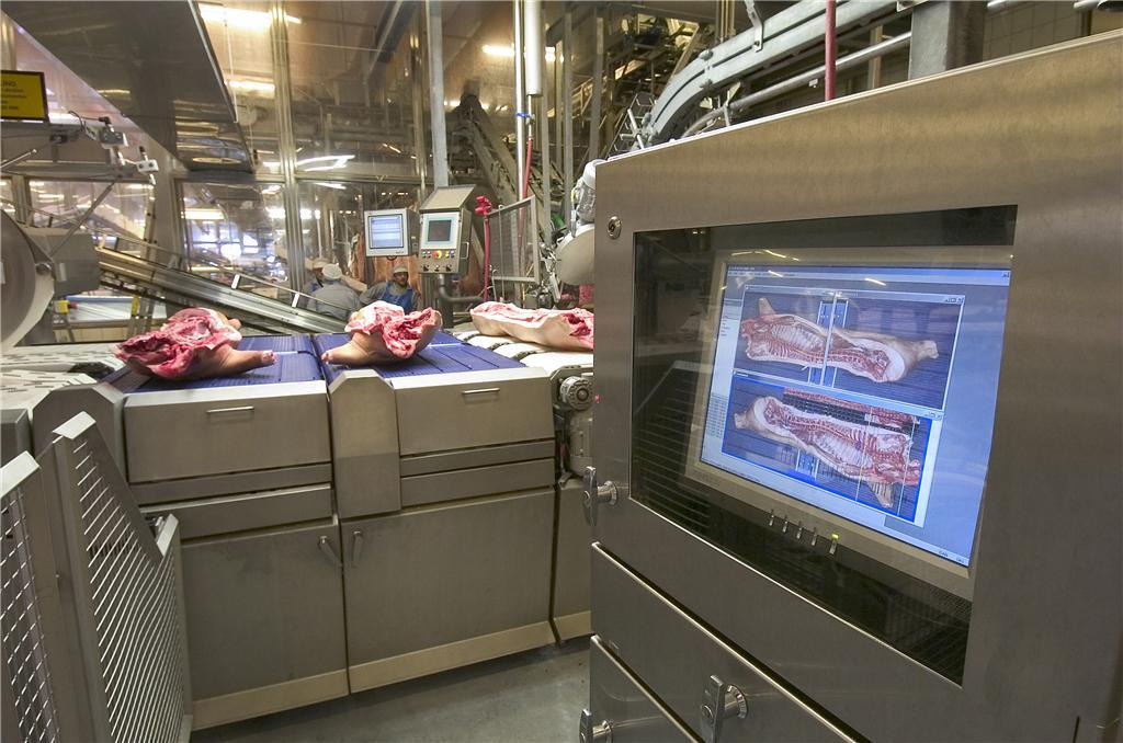 Slaughterhouse level Classification of meat Colour Fat content Muscle volume Carcass cut into minor pieces