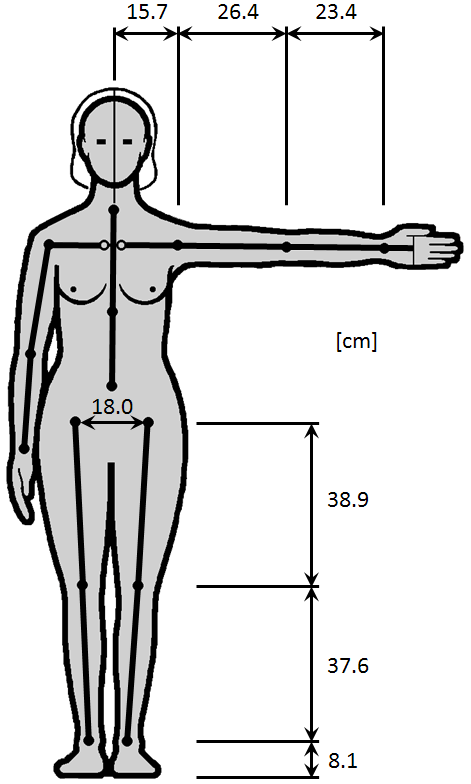The 50th Percentile Female Distances Between Joints Figure A1.