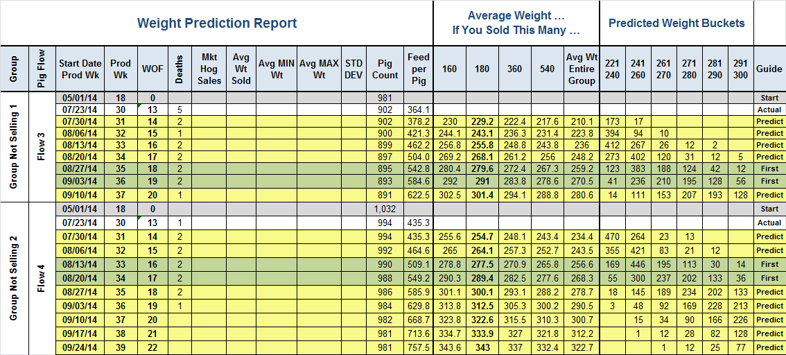Daily/Weekly Weight Prediction Report (Not Selling tab) WEIGHT BY