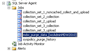 15. Under SQL Server Agent, Jobs, you will see that a new job mdw_purge_data_[wcadminmdw2010] has been created.