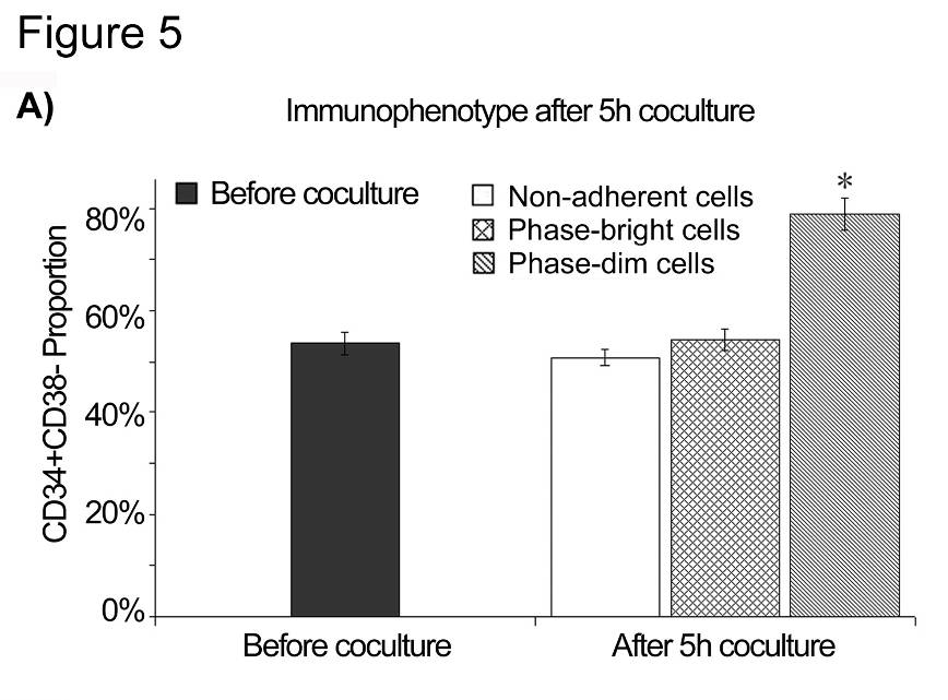 Figure 3-5. (A) Enrichment of CD34+CD38- cells in phase-dim fraction. Cells containing around 50% CD34+CD38- cells were plated on MSC layer.