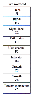 Sonet/SDH Path Overhead STS Path Trace (J1) Path identifier for connection monitoring STS Path BIP-8 (B3) Path level BER control (end-to-end) STS Path Signal Label (C2) Indicates the SPE