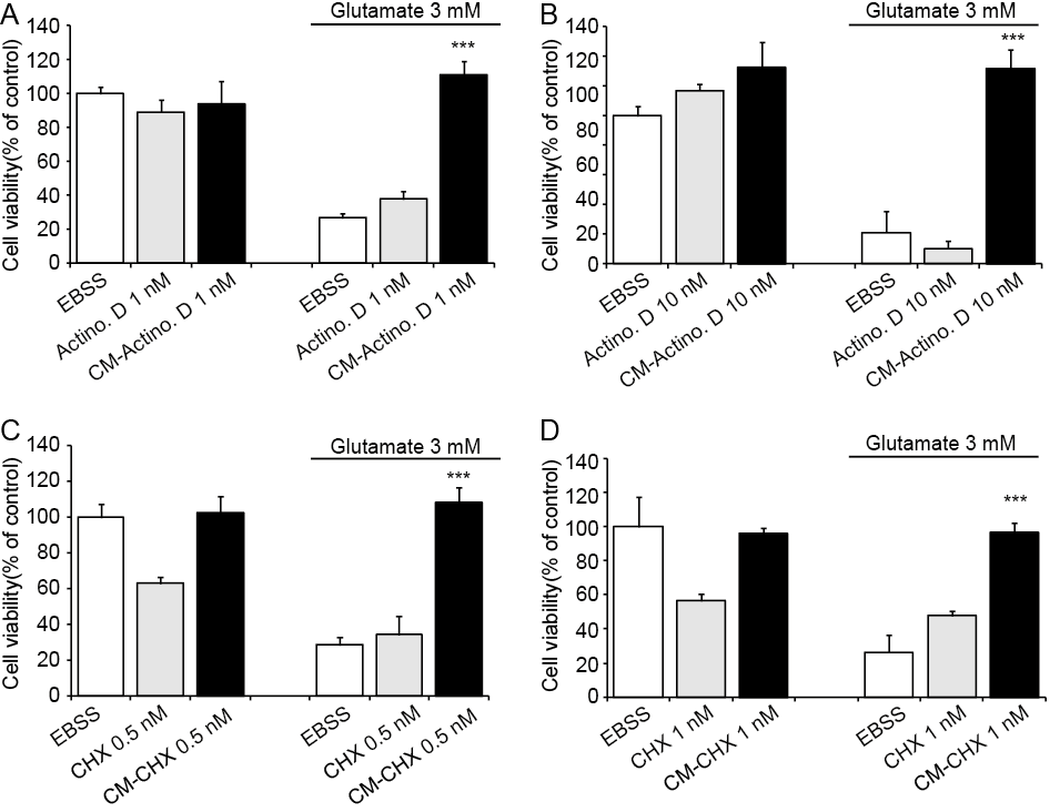 Results 72 glutamate at low concentrations. In order to avoid additional effects, however, the protein synthesis inhibitors were removed from CM before HT-22 cell treatment.