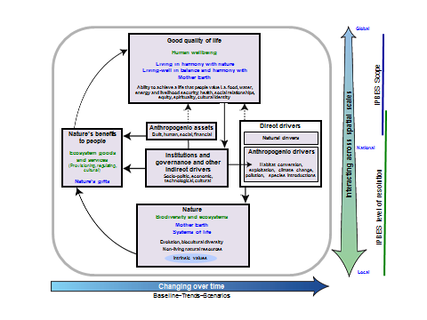 Figure II Operational conceptual model of the Platform Science and other knowledge systems Science-policy interface on biodiversity and ecosystems services Analytical conceptual framework IPBES
