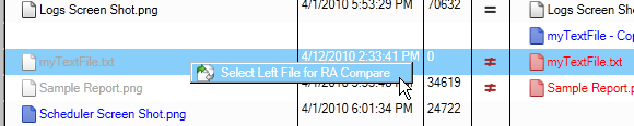 4. When the compare is complete, the RA Compare report will be displayed.