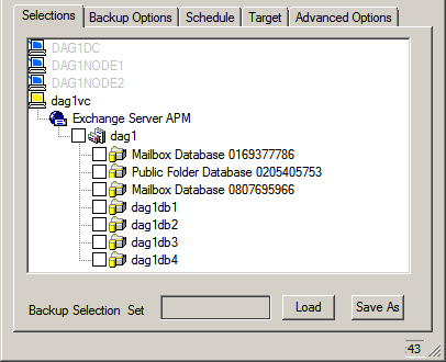 38 Chapter 4 Installing and Removing Exchange Server APM Figure 4-5: Virtual Client Installation dialog with relevant cluster nodes selected all designated cluster nodes and installed locally.