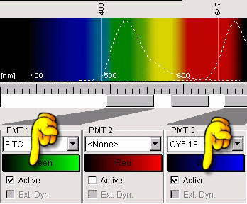 Appendix KClick on the list boxes of the detection channels, for example «PMT1» and «PMT3», and select the fluorescence dye to be used in each channel, for example «FITC» and «CY5».