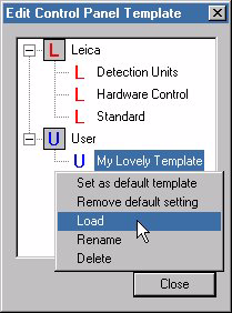 Appendix Save the new assignment as a user-defined function template. KClick on the left button. KGivethenewfunctiontemplateanameandclickonOK.