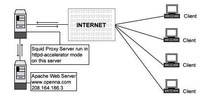 Server Software (Proxy Network Services) 1 CHAPTER 8 Edit the squid.conf file (vi /etc/squid/squid.