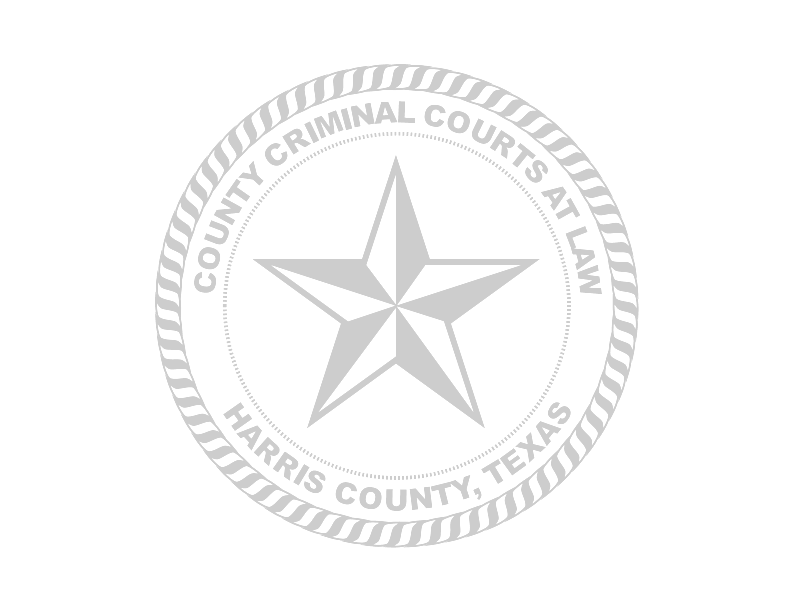 CAUSE NO. THE STATE OF TEXAS IN THE COUNTY CRIMINAL vs.