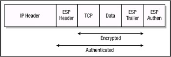 Figure 6.1: IP packet. When Authentication Header (AH) is used in transport mode, the AH services protect the external IP header along with the data payload.