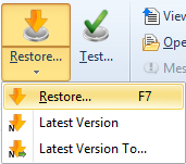 Getting Started 15 restore the latest version of a particular file restore the latest version of multiple selected files To make a full or a filtered restore start the Restore Wizard by pressing the