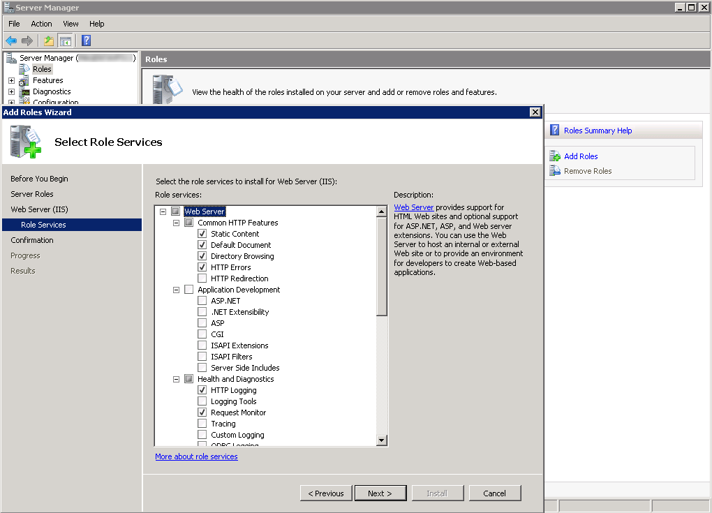 Preparing the system In this dialog select the 'Web Server