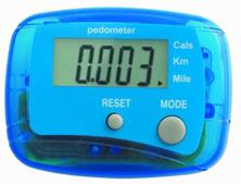 Program incentives All employees received a pedometer to keep track of their daily steps.