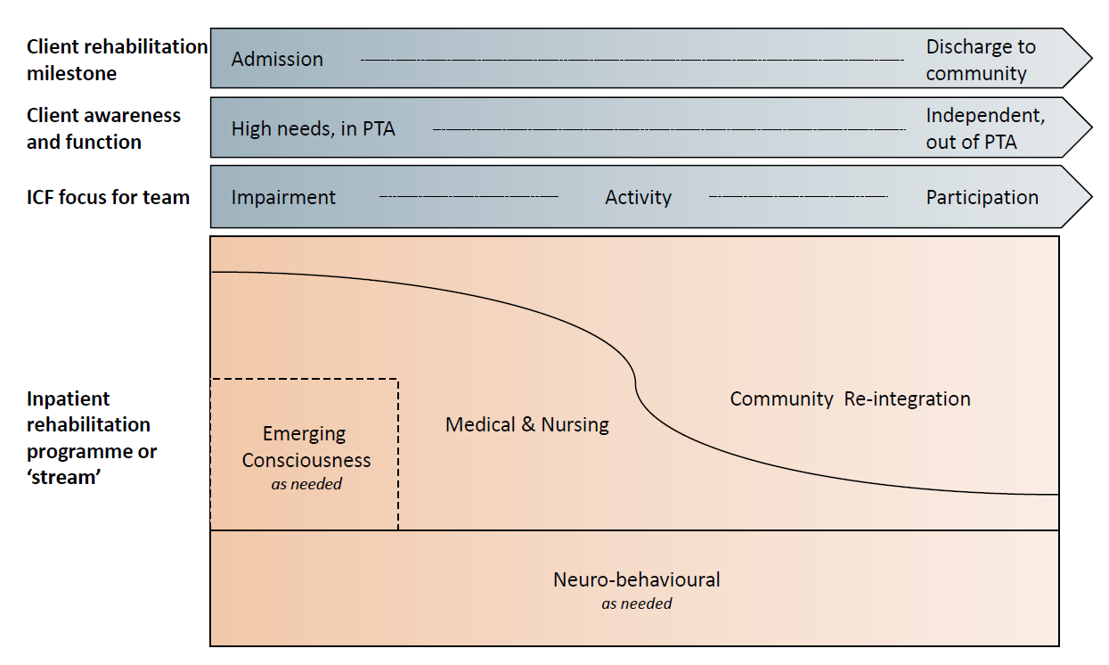 The diagram below shows the programmes in relation to the: Client s rehabilitation progress (milestones) Client s awareness and function Focus for the team based on the International Classification