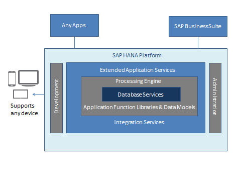 30 The SAP HANA Platform: Overview The following information is provided by SAP. Forrester has not validated any claims and does not endorse SAP or its offerings.