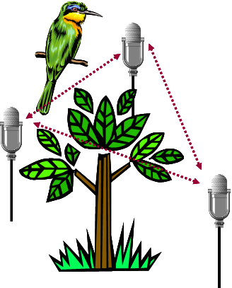 Fig 8: Tracking birds using acoustic devices 3.