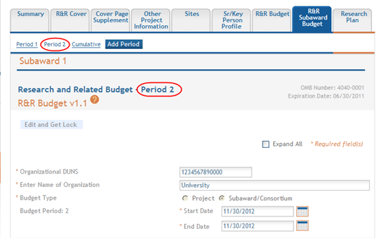 1. From within the subaward form, select the Add Period button.