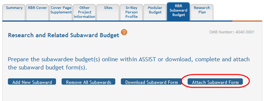 1. Select the Download Subaward Form button. Download Subaward Form Button The Research & Related Budget form opens in another browser window. Complete the form and save it locally.