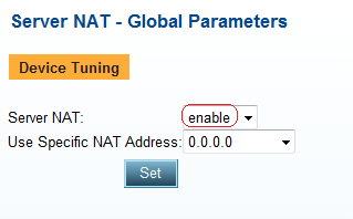 Configure NAT Server NAT 1. From the menu, select AppDirector NAT Server NAT Global Parameters to display the Server NAT - Global Parameters page similar to the one shown. 2.