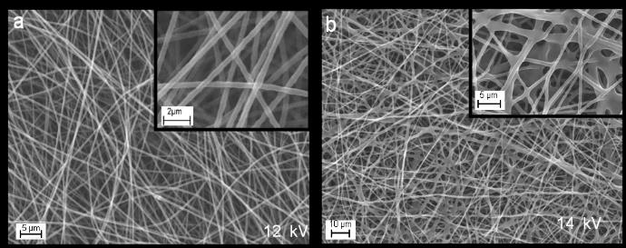 P-BM09 Polyethylene oxide nanofibers: effects of electrospinning and crosslinking conditions Murat Şimşek *,1, Soner Çakmak 1, Menemşe Gümüşderelioğlu 1,2 Hacettepe University, Nanotechnology and