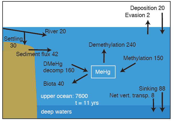 (UNEP Global Mercury Report 2013, DRAFT 13 November 2012) 30 1066 1067 1068 1069 1070 1071 decomposition of organic material falling from surface waters.