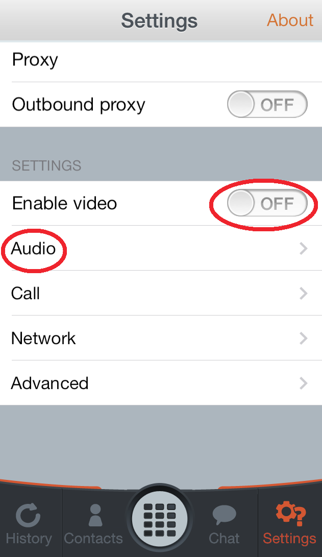 video Choose the Audio option Press Cancel in the lower left corner 3) You will see the main dialing screen with