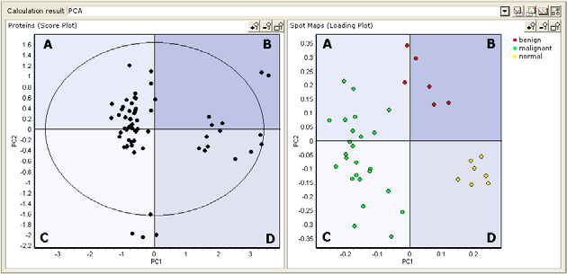 8 Calculation and Results - Principal Component Analysis 2 Compare the two plots to see the relationship between the grouping of proteins and spot maps It is possible to perform a rough comparison of