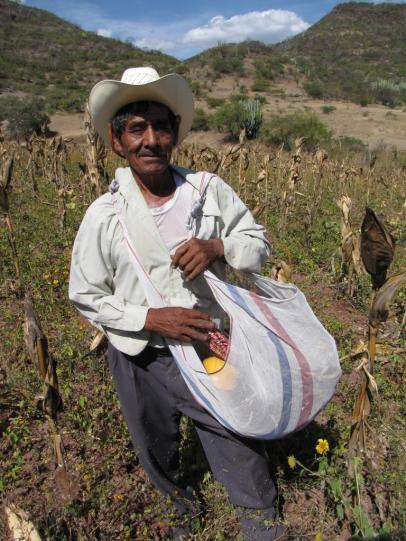 1. Opportunity: integrated programs like MasAgro Sustainable Modernization of Traditional