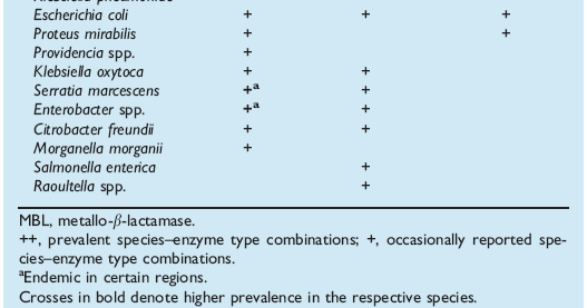 Carbapenemasi nei Gram-negativi KPC in K. pneumoniae and E. coli MBLs (IMP and VIM) in P.
