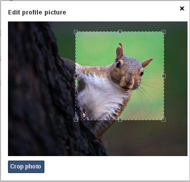 Figure 5.7: Cropping contact image new address books. Figure 5.