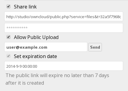 Figure 4.5: Public share box This creates a public URL that anyone can use to access the share.