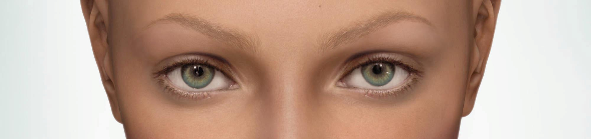 Maya is the first virtual beauty to be created solely by the computer an artificial body which is oriented to human ideals of beauty, yet comes into being entirely virtual, without being created from