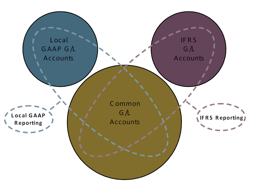 3 The Basics of Financial Accounting One allows you to meet these standards, in addition to GAAP and local standards by enabling the parallel account model.
