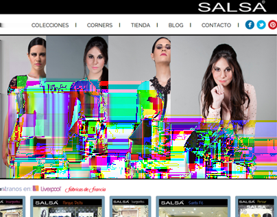 Ponte Salsa Project management and development of website using HTML5, CSS3,