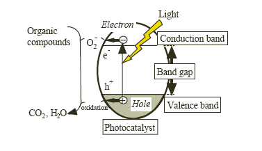 Figure 1.6 Mechanism of photocatalysis. (TitanPE Tech. Inc. Library, Shanghai).