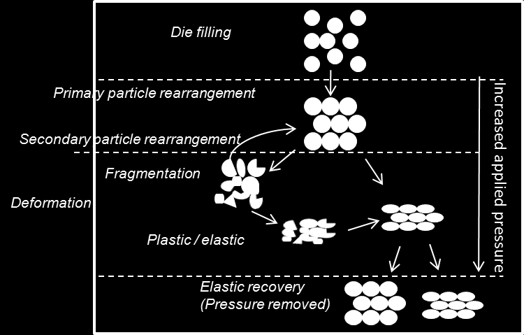 dominating compression mechanics expressed in all regions, while other materials possess several mechanical properties. In addition, the loading conditions (e.g. temperature, applied pressure, punch velocity and total duration time for the compression cycle) affect the degree of fragmentation, plastic and elastic deformation [32, 33].