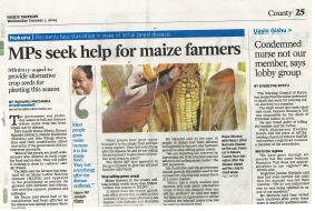 Sineria offers local farmers the best solution for Maize protection against this devastating disease: Kobe 1.2SL!