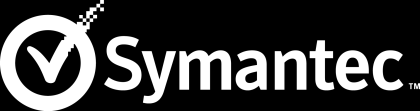 2010 Symantec Disaster