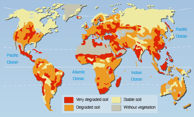 20 (Panesar A.R. and Werner C., 2006). It is also one of the reasons for degraded soils. Currently, approximately 25 % of the Earth s land is desertified 13 (IFAD, 2010).
