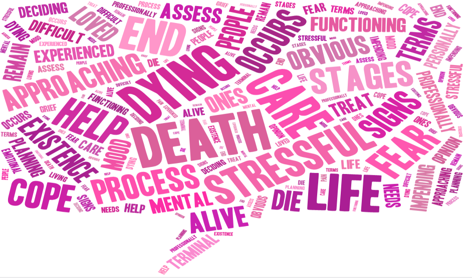 End of Life Dashboard Page 1 Overall Choices Site Visits Tag cloud showing end of life related searches 50.0M 40.0M 30.0M 20.0M 10.0M 0.0 35.2M 42.