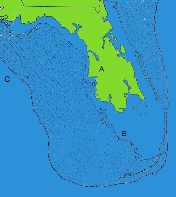 Florida Through Time Sea Level Change Happens!