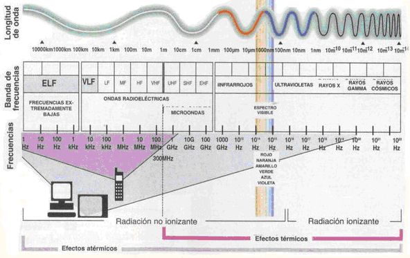 Text: Spectral of electromagnetic waves Infrared-Ultraviolet-X rays Gamma Rays-Cosmic Rays Extremely low frequencies- Radio electric waves-microwaves-visible spectrum