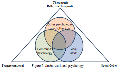 that social work is aligned with the use of the Diagnostic and Statistical Manual of Mental Disorders (DSM) to make formal conclusions about pathology (Turner, 2005).