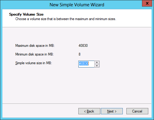 Figure 1-36 The Specify Volume Size page. 6.