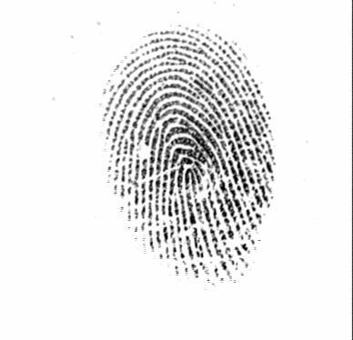 2.2. Fingerprints 17 as authorized users usually have an interest that no impostor is able to intrude into the system impersonating an authorized user.