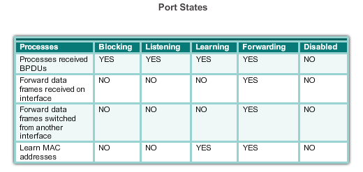 PVST+ PORT STATES AND PVST+