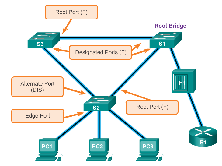 RAPID PVST+ LINK TYPES The link type can determine whether the port can immediately transition to forwarding